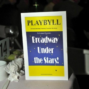 28. PLAYBILL for the evening's performance (2)